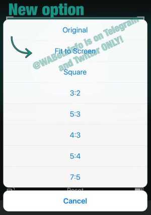 WhatsApp Beta Fit to Screen