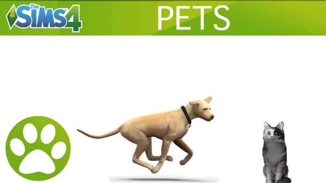 sims 4 pets