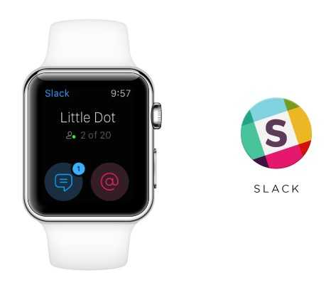 Slash Drops Standalone App on Watch,Is Apple Watch Dying