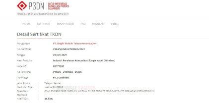 RMX3363 TKDN