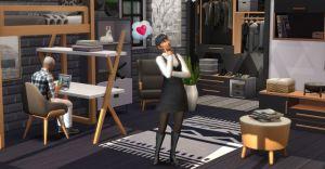 Sims 4 dream home decor pack