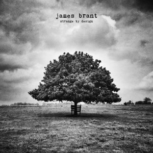James Brant cover courtesy of Independent Music Promotions
