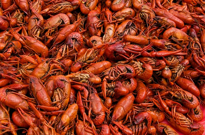 Crustaceans Nations Crawfish Boil