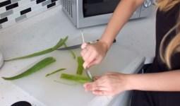 Çatlaklar İçin Aloe Vera Nasıl Kullanılır?