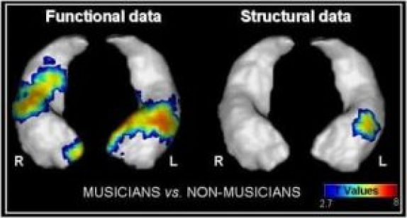 difference between musician and ordinary people
