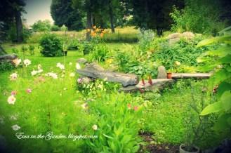 ogrody-polskie-6