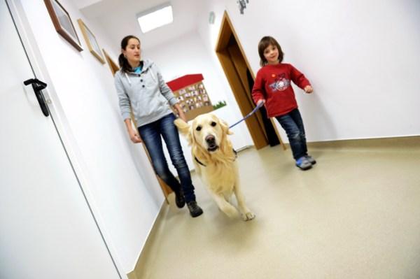 caini-de-terapie-UCOS-autism-14