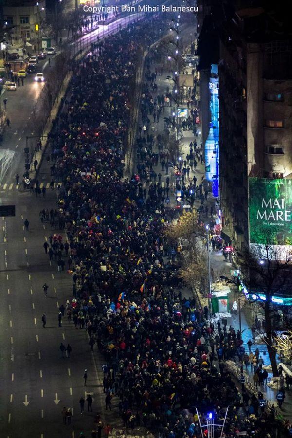 protest-gratiere-multimea-masiva-bratianu