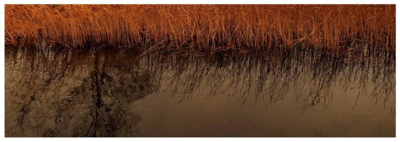 Chojnice-legenda-Ostrowite-jezioro-utopiec-diabeł-podanie-legenda-ludowa