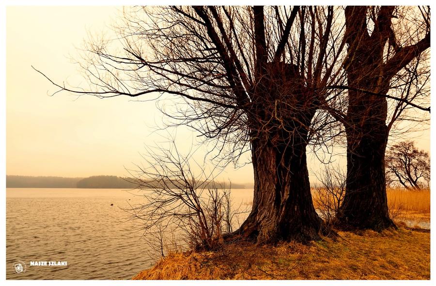 Legenda o Utopcu z jeziora Ostrowitego