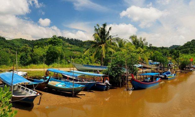 Malezja – Wyspa Langkawi i pola ryżowe