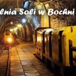 Kopalnia soli w Bochni – UNESCO, zjeżdżalnia i inne ciekawostki