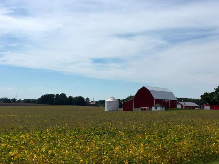 Farmland Fort Wayne, Mama ía