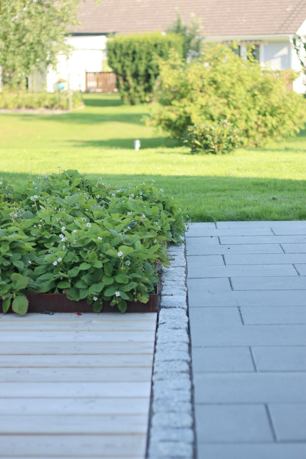 Pool trädgård - Natalia Lindberg Trädgårdsdesign82