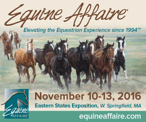 Join me at Equine Affaire 2016 - presentations, book-signings, or just a good chat about horses and books!