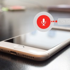 SEO and voice search: everything you need to know
