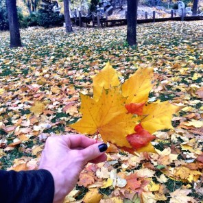Gorky Park Mosca autunno