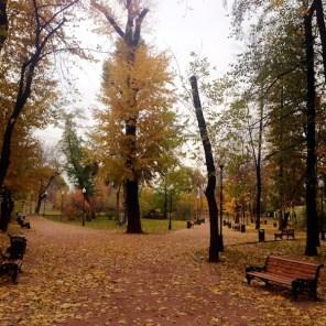 Gorky Park Mosca natura