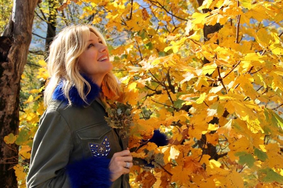 Foliage d'autunno i boschi più belli dove ammirarlo