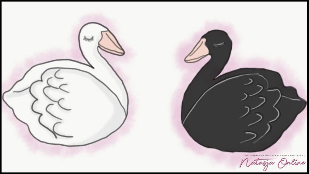 Witte zwanen zwarte zwanen