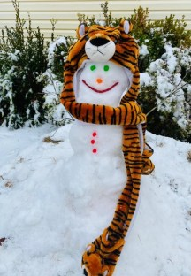 Another Many Tiger snowman. Serena, who is a Many Tiger Cheerleader and all are Many Tigers fans, so why don't a Many Tiger snowman!
