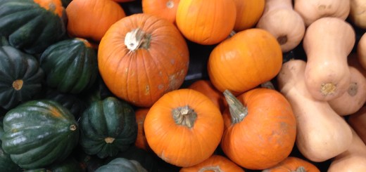 Photo of Acorn Squash, Pumpkin Squash, and Butternut Squash