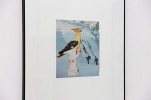 Exhibition view, Scrawitch Gallery, photo Michel Martzloff