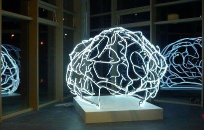 44_cerveau67