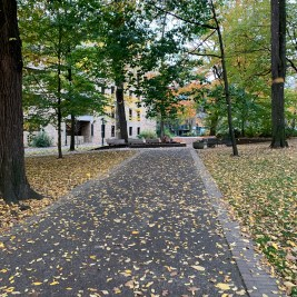 Honestly, this picture looks kinda boring. It's just a cemement walkway with some dead leaves on it and in the caption, the author gets sentimental about trees dying seasonally and the magic in the world.