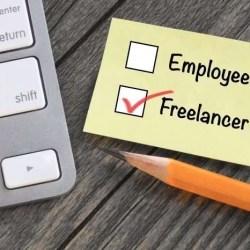 employee freelancer check boxes