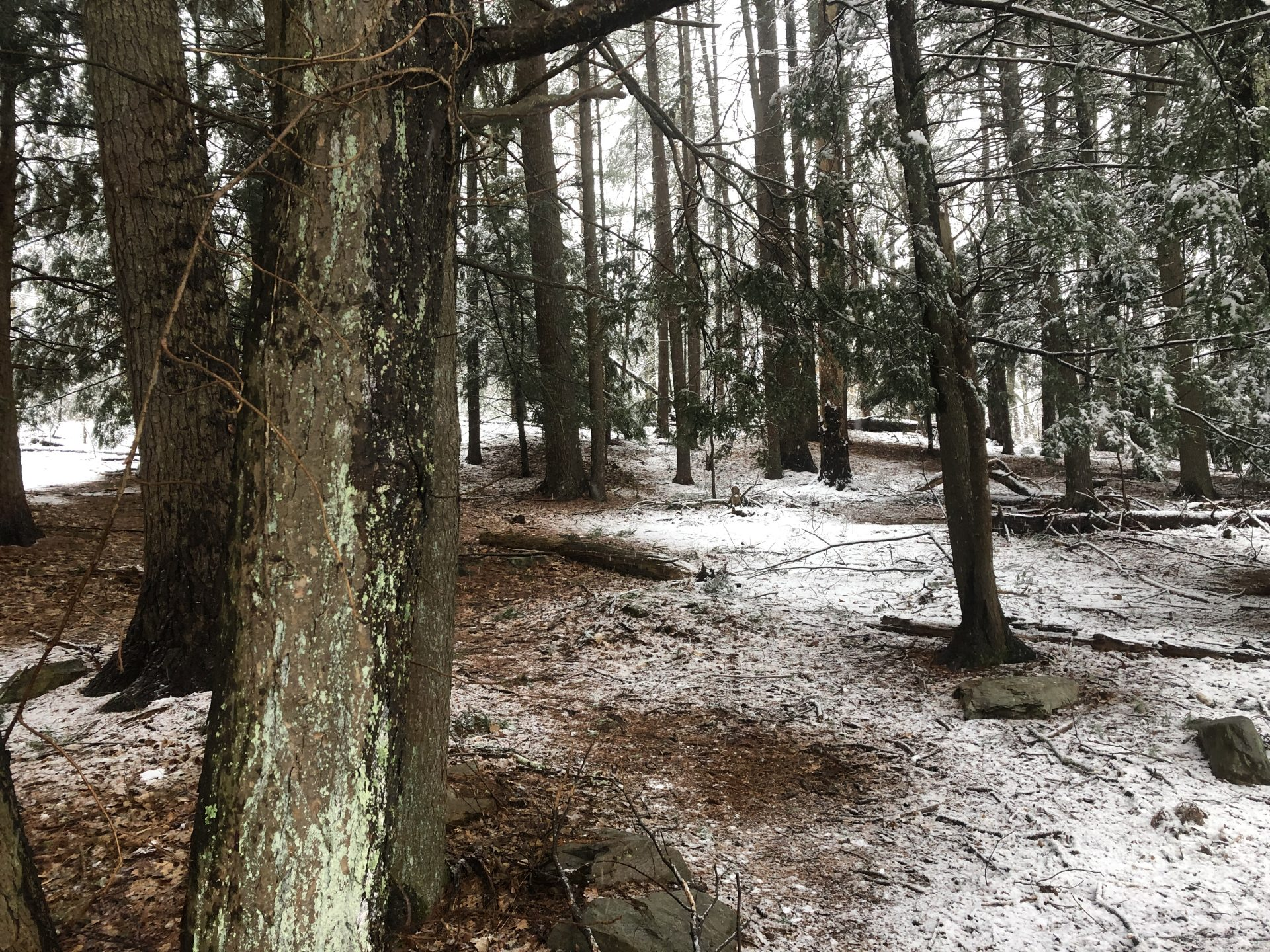 snow south natick