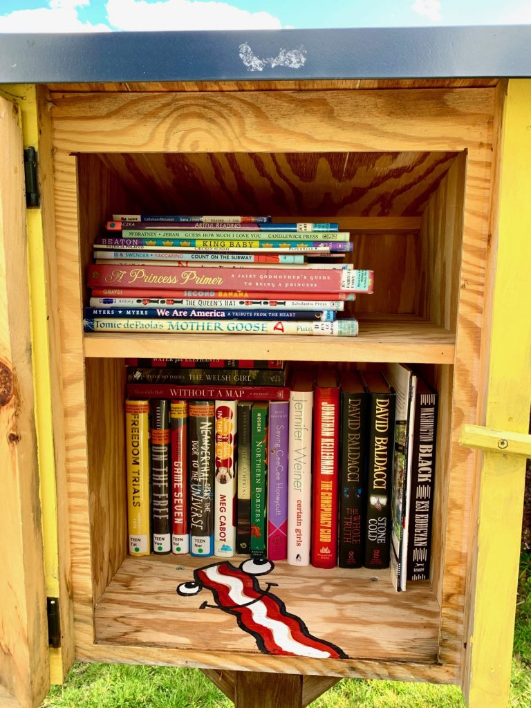 Little Free Library, South Natick Dam Park, 9 Pleasant St. S