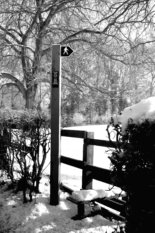 Festival of Winter Walks