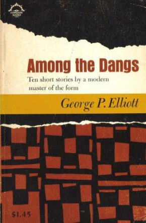 Among the Dangs by George P. Elliott book cover