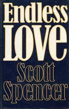 cover of Endless Love by Scott Spencer