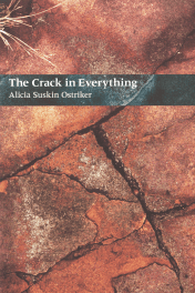 The Crack in Everything by Alicia Suskin Ostriker book cover