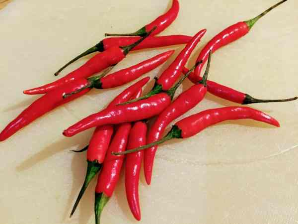 Hot and spicy red birds eye chillies