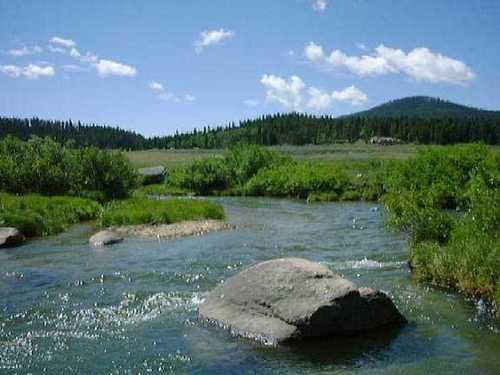 Camping Bighorn National Forest https://i1.wp.com/www.nationalforests.org/assets/images/image.jpg?resize=500%2C375&ssl=1