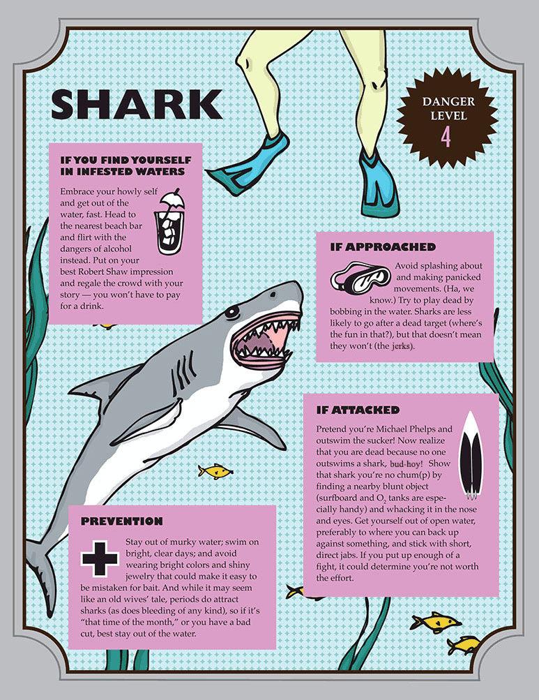 shark american animal safety tips