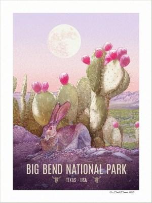 Big Bend National Park Print