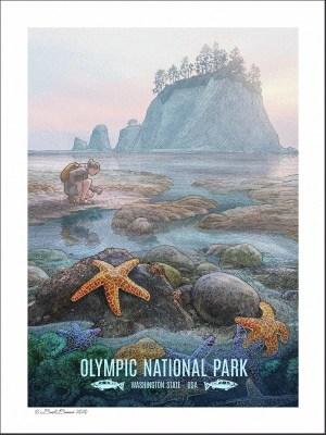 Olympic National Park Print