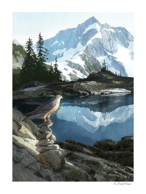 Above the Timberline - art print by Bart Bemus