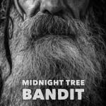 Midnight Tree Bandit