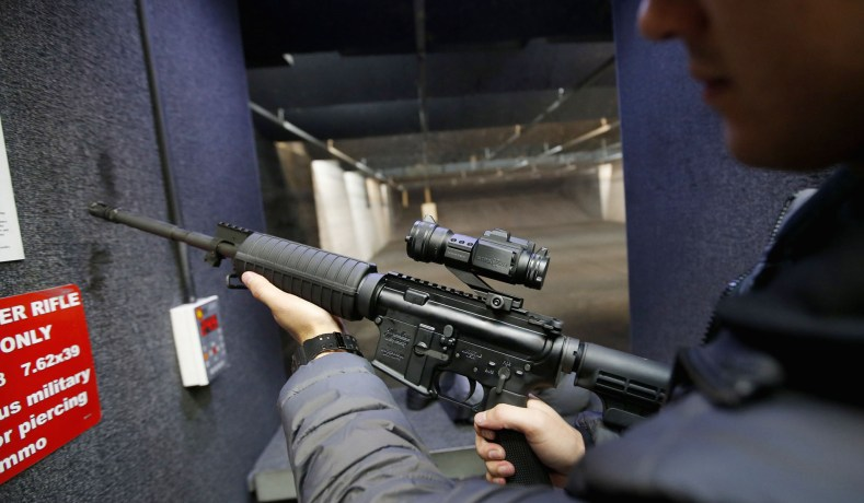 Assault Weapons Preserve the Purpose of the Second Amendment
