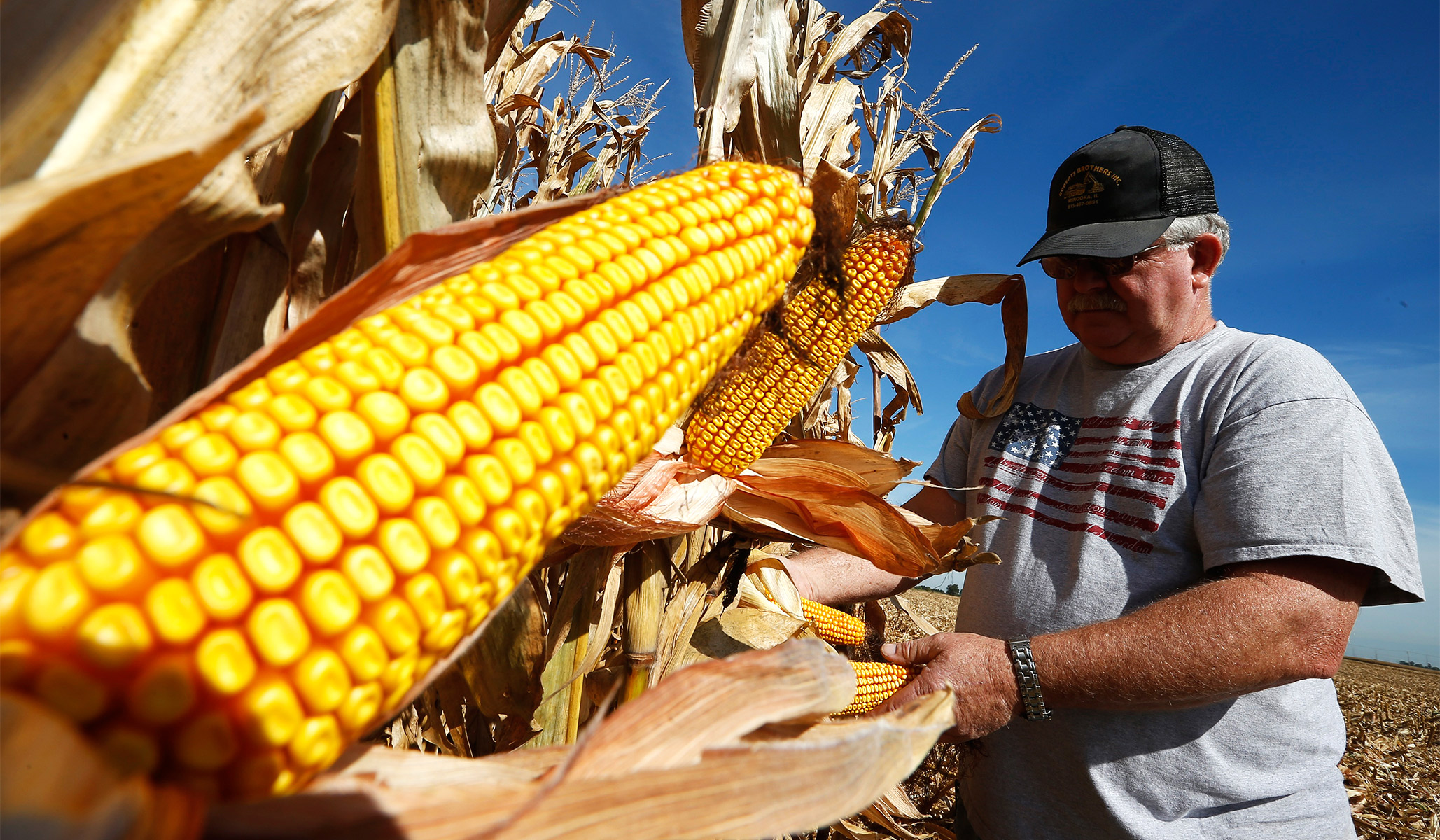 China to Increase U.S. Agricultural Imports after Secret Trade Talks: Report thumbnail