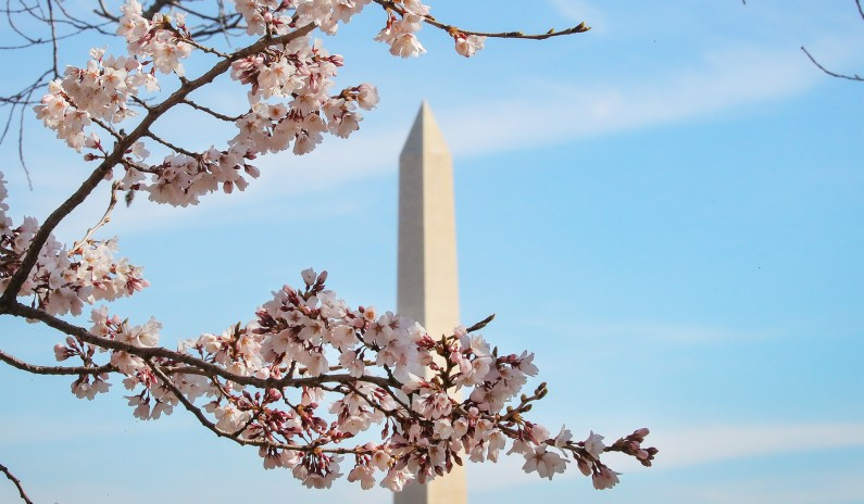<p>POLL: Americans Rank D.C. Worst Place at the U.S. thumbnail
