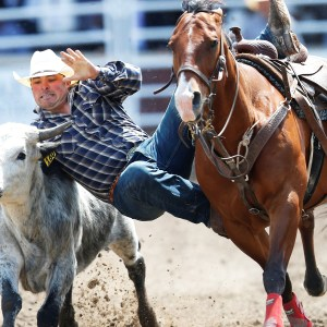 Calgary Stampede 2019 National Review