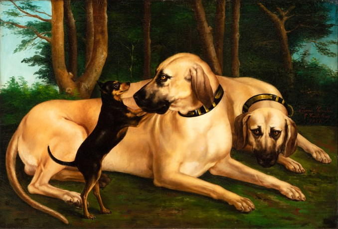 Dog Days of Summer? Visit the New Museum of the Dog