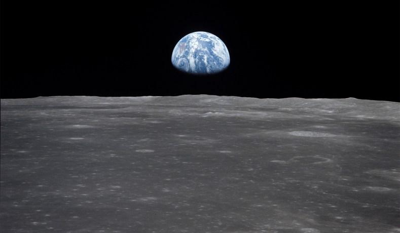 'Tardigrades on the Moon Is Not Good'
