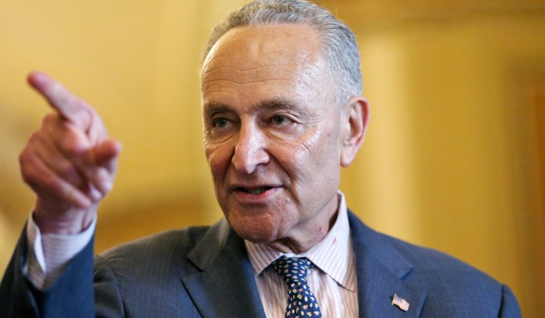 Image result for Schumer